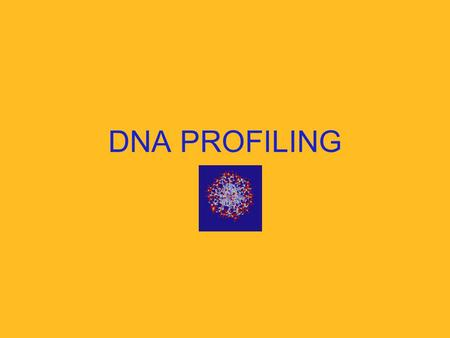 DNA PROFILING. What is DNA Profiling? It is a method of identifying an individual by unique characteristics of that person's DNA.