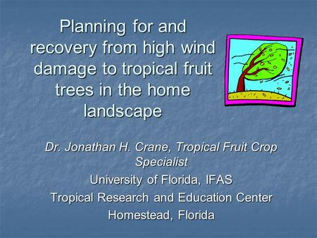 Planning for and recovery from high wind damage to tropical fruit trees in the home landscape Dr. Jonathan H. Crane, Tropical Fruit Crop Specialist University.