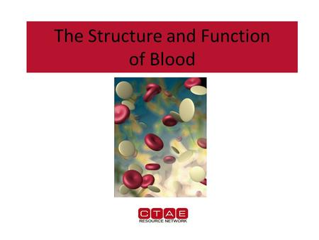 The Structure and Function of Blood. Composition of Blood Blood is responsible for….. – Transporting gases (oxygen & carbon dioxide) – Transporting waste.