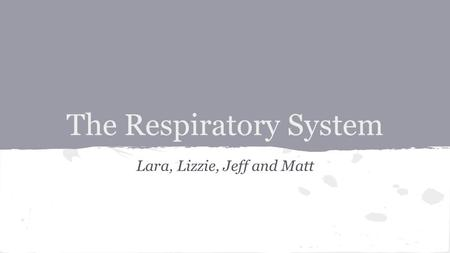 The Respiratory System Lara, Lizzie, Jeff and Matt.