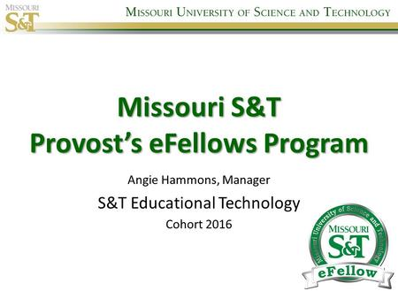 Missouri S&T Provost's eFellows Program Angie Hammons, Manager S&T Educational Technology Cohort 2016.