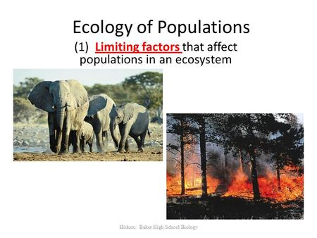 Ecology of Populations (1) Limiting factors that affect populations in an ecosystem Hickox: Baker High School Biology.