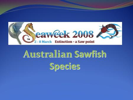 Australian Sawfish Species. There are 4 known sawfish species in Australian Waters There are 4 known sawfish species in Australian Waters Narrow sawfish.