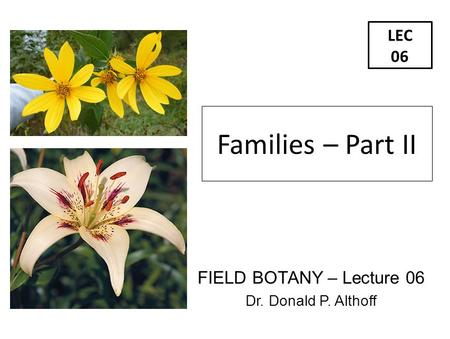 Families – Part II LEC 06 FIELD BOTANY – Lecture 06