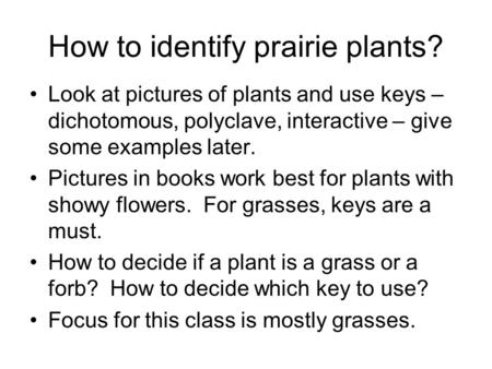 How to identify prairie plants? Look at pictures of plants and use keys – dichotomous, polyclave, interactive – give some examples later. Pictures in books.