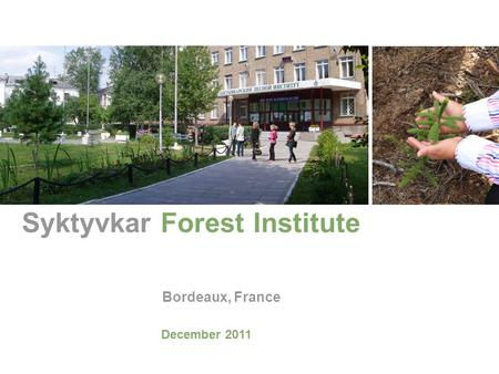 Syktyvkar Forest Institute Bordeaux, France December 2011.