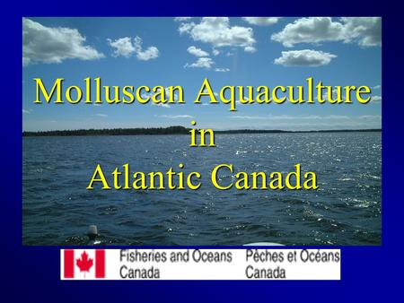 Molluscan Aquaculture in Atlantic Canada. Need for Aquaculture The need for food around the world is always increasing Fish stocks are declining - New.