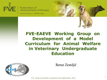 FVE-EAEVE Working Group on Development of a Model Curriculum for Animal Welfare in Veterinary Undergraduate Education Borut Zemljič FVE General Assembly.