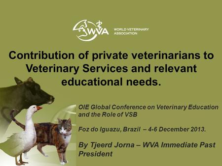 OIE Global Conference on Veterinary Education and the Role of VSB Foz do Iguazu, Brazil – 4-6 December 2013. By Tjeerd Jorna – WVA Immediate Past President.