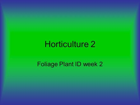 Horticulture 2 Foliage Plant ID week 2. Spathiphyllum 'Peace Lily' House plant Low light Requires nitrogen.