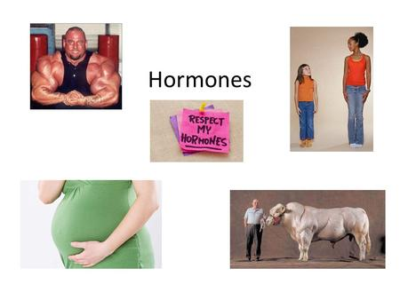 Hormones. Using one or more examples, explain functions of two hormones in human behavior.