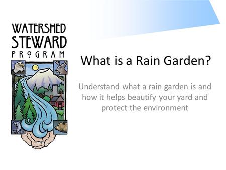 What is a Rain Garden? Understand what a rain garden is and how it helps beautify your yard and protect the environment.