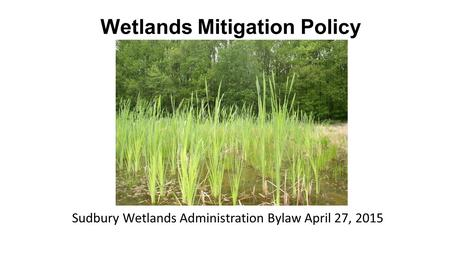 Wetlands Mitigation Policy Sudbury Wetlands Administration Bylaw April 27, 2015.