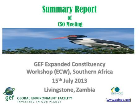 Summary Report of CSO Meeting GEF Expanded Constituency Workshop (ECW), Southern Africa 15 th July 2013 Livingstone, Zambia (www.gefngo.org)www.gefngo.org.