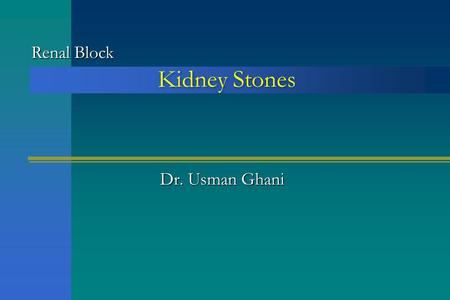 Kidney Stones Dr. Usman Ghani Renal Block. OverviewOverview Introduction Introduction Conditions causing kidney stone formation Conditions causing kidney.