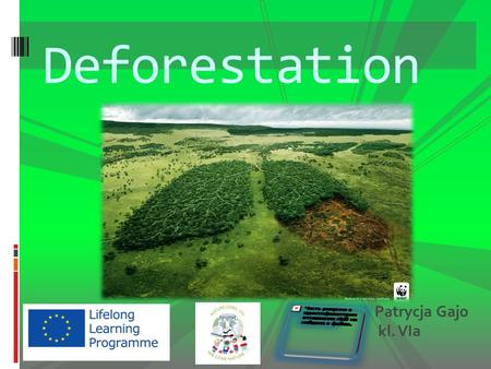 Deforestation Patrycja Gajo kl. VIa. Deforestation is destruction of trees.