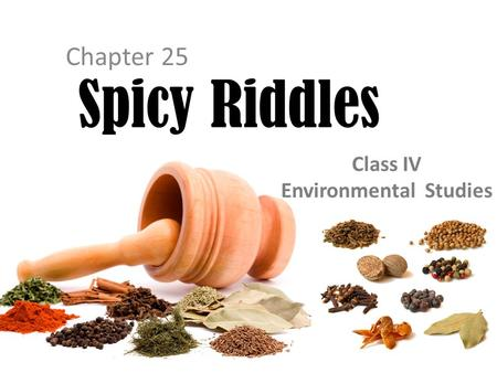 Chapter 25 Spicy Riddles Class IV Environmental Studies.