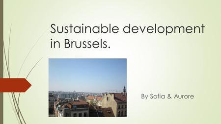 Sustainable development in Brussels. By Sofia & Aurore.