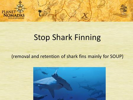 Stop Shark Finning (removal and retention of shark fins mainly for SOUP)