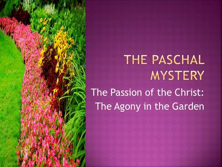 The Passion of the Christ: The Agony in the Garden.