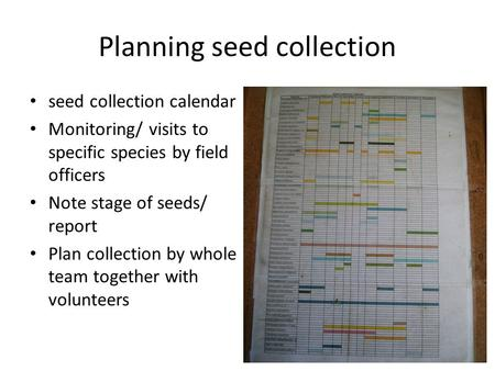 Planning seed collection seed collection calendar Monitoring/ visits to specific species by field officers Note stage of seeds/ report Plan collection.