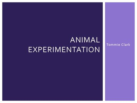 Tommie Clark ANIMAL EXPERIMENTATION.  There are extremely different perspectives when looking at animal testing  A proper compromise would involve a.