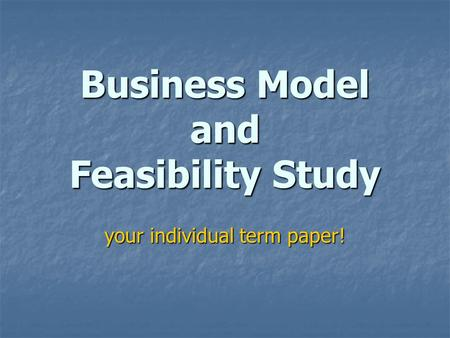 Business Model and Feasibility Study your individual term paper!