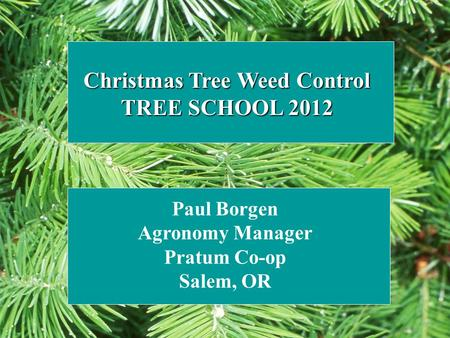 Christmas Tree Weed Control TREE SCHOOL 2012 Paul Borgen Agronomy Manager Pratum Co-op Salem, OR.