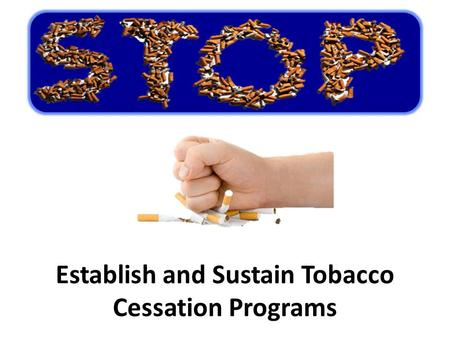 Establish and Sustain Tobacco Cessation Programs.