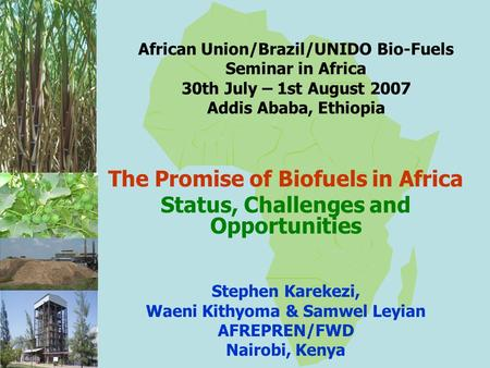 African Union/Brazil/UNIDO Bio-Fuels Seminar in Africa 30th July – 1st August 2007 Addis Ababa, Ethiopia The Promise of Biofuels in Africa Status, Challenges.