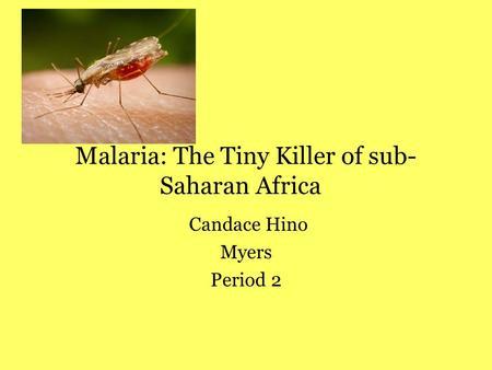 Malaria in Sub-Sahara Africa It&nbspTerm Paper