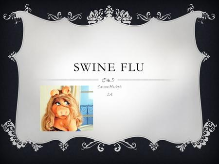 SWINE FLU Saxton Hesleph 2A. DEFINITION  Swine influenza virus is common throughout pig populations worldwide. Transmission of the virus from pigs to.