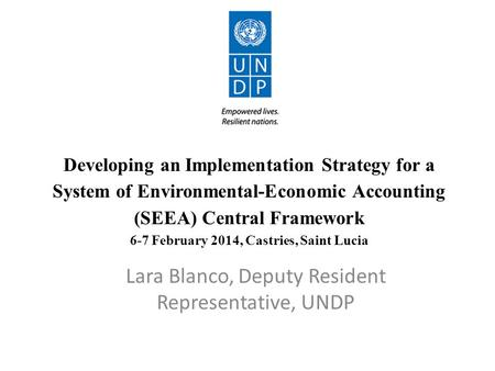 Developing an Implementation Strategy for a System of Environmental-Economic Accounting (SEEA) Central Framework 6-7 February 2014, Castries, Saint Lucia.