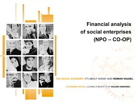 1 Financial analysis of social enterprises (NPO – CO-OP)
