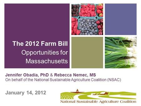 + Jennifer Obadia, PhD & Rebecca Nemec, MS On behalf of the National Sustainable Agriculture Coalition (NSAC) January 14, 2012 The 2012 Farm Bill Opportunities.