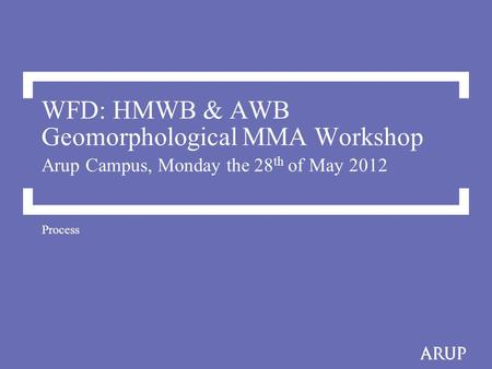 WFD: HMWB & AWB Geomorphological MMA Workshop Arup Campus, Monday the 28 th of May 2012 Process.