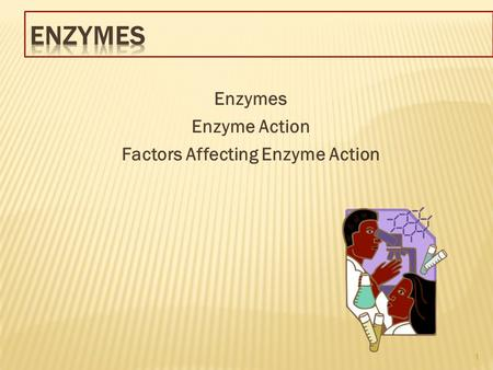 Enzymes Enzyme Action Factors Affecting Enzyme Action 1.