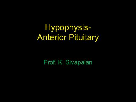 Hypophysis- Anterior Pituitary
