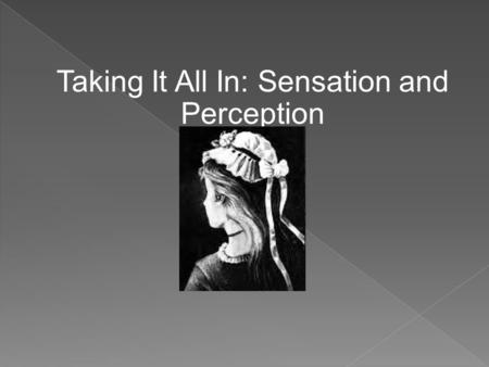Taking It All In: Sensation and Perception