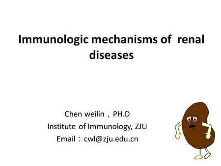 Immunologic mechanisms of renal diseases Chen weilin , PH.D Institute of Immunology, ZJU  :
