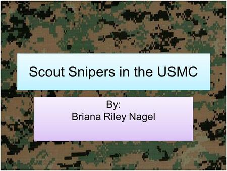 Scout Snipers in the USMC