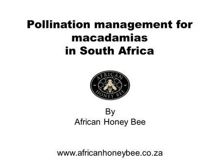 Pollination management for macadamias in South Africa By African Honey Bee www.africanhoneybee.co.za.