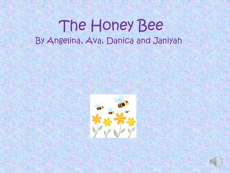 The Honey Bee By Angelina, Ava, Danica and Janiyah.