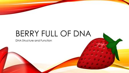 BERRY FULL OF DNA DNA Structure and Function. TEKS 3 (E) evaluate models according to their limitations in representing biological objects or events 5.