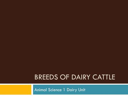 BREEDS OF DAIRY CATTLE Animal Science 1 Dairy Unit.