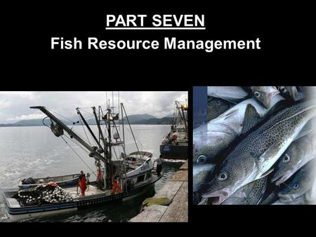 PART SEVEN Fish Resource Management Introduction About 80% of fish harvested come from oceans. Why is this obvious?  Most of the world's water is ocean,