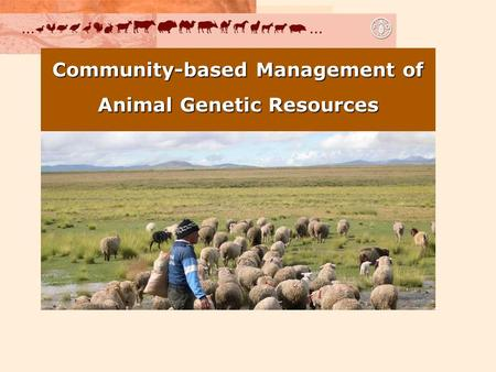 Community-based Management of Animal Genetic Resources.