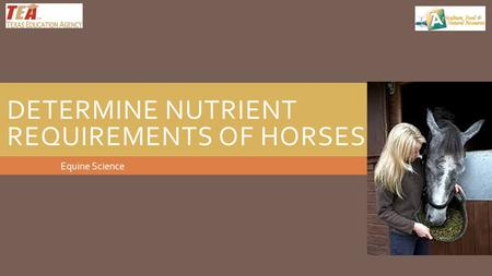 DETERMINE NUTRIENT REQUIREMENTS OF HORSES Equine Science.