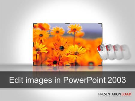 Edit images in PowerPoint 2003. Show graphics-menu 2 1 3 1 2 3 PowerPoint 2003 To edit your images in your presentation you require the graphics menu.