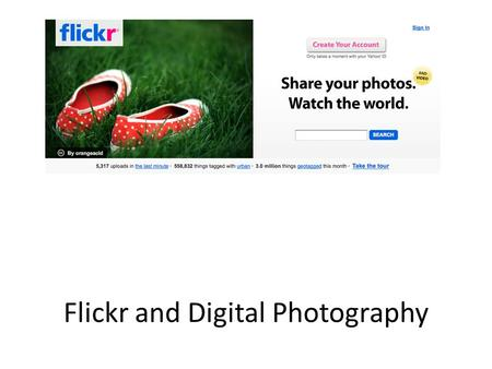 Flickr and Digital Photography. Flickr in a Nutshell Community of photographers Millions of users – Special Interest Groups Sharing Images Creative Commons.